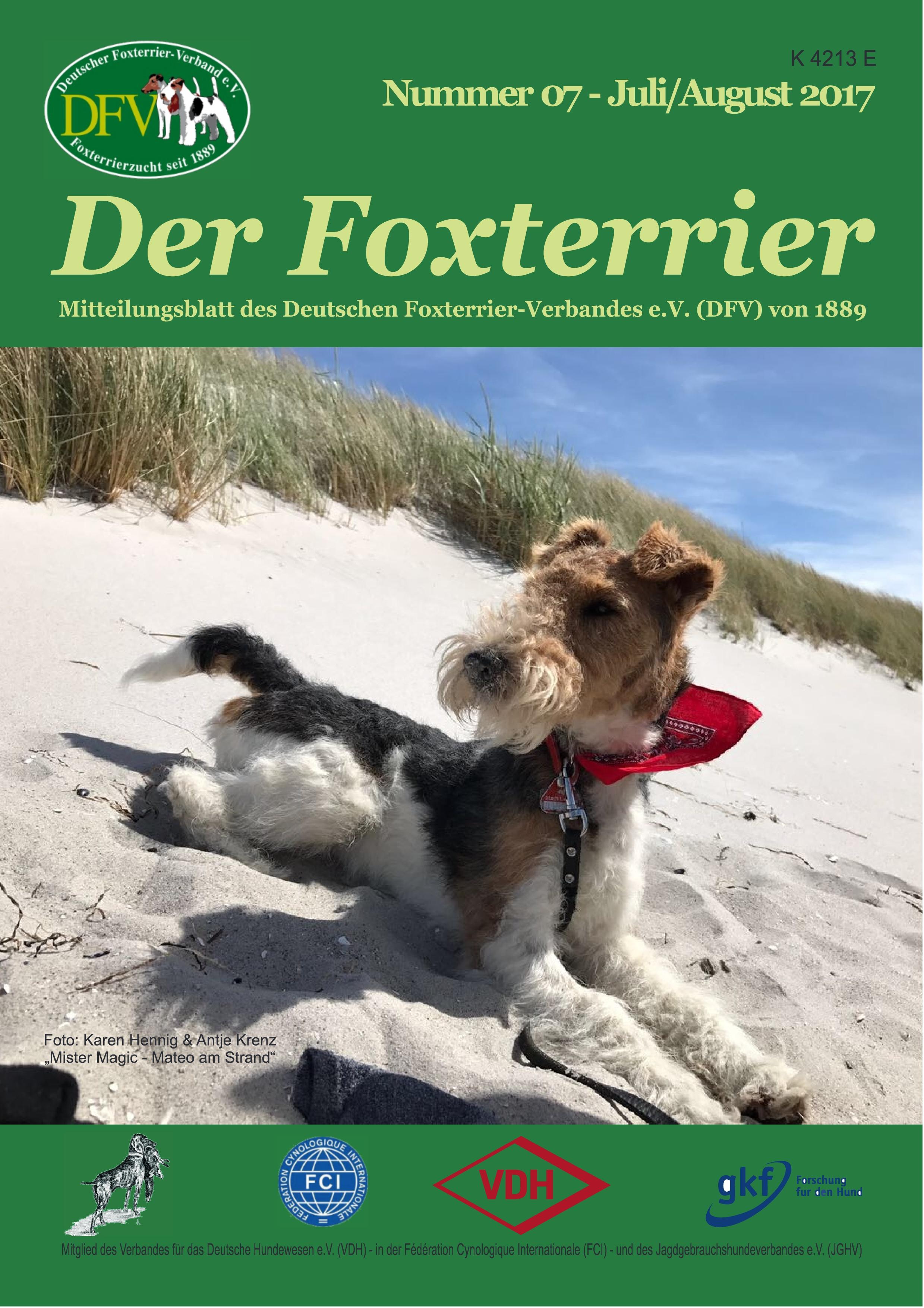 Großzügig Drahthaar Foxterrier Rettung Galerie - Schaltplan Serie ...
